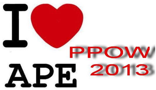 2013 Jahresrückblick PPOW