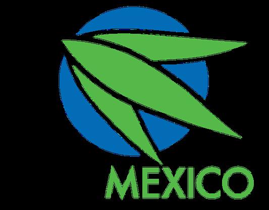 Congrès mondial du Bambou – MEXICO 2018 - WOLD BAMBOO CONGRESS - WBC 2018 MEXICO