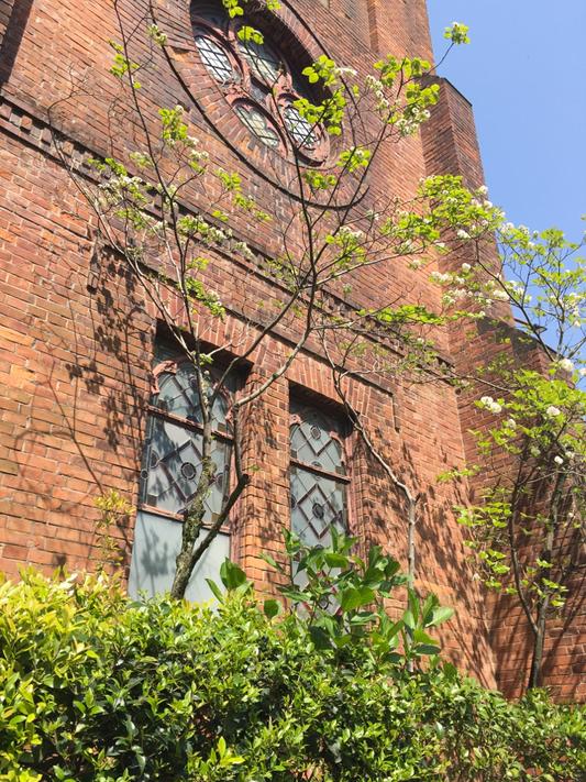 会場への道すがら出逢った京都御所前の教会。新緑と青空がきれいでした。