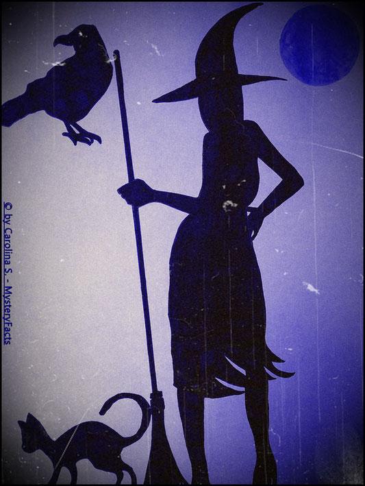 So in etwa hat sich früher jeder die Hexen vorgestellt. Ein Besen zum Fliegen, einen Zauberhut, eine schwarze Katze oder einen schwarzen Raben, hässlich und überall voller Warzen.