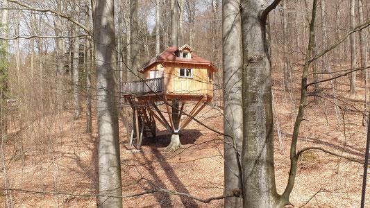 Baumhaus im Wald, Baba Jaga