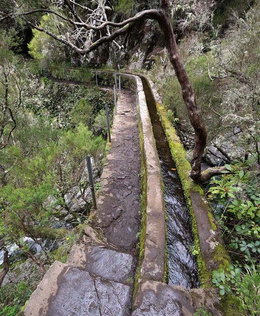 Levadabrücke am 25 Quellen Wanderweg, Madeira.