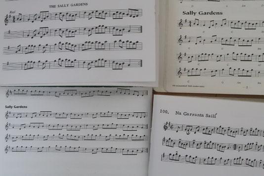 アイリッシュ音楽 ケルト音楽 サリーガーデンズ 楽譜