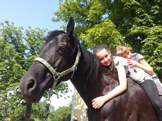 Zwei Kinder liegen auf dem Rücken eines Pferdes
