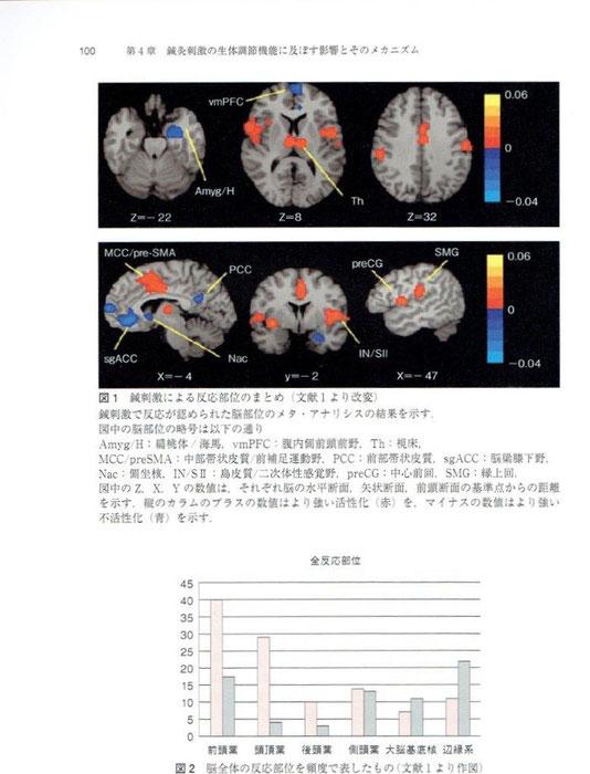 前頭葉、頭頂葉は活性化。辺縁系、大脳基底核は不活性化。