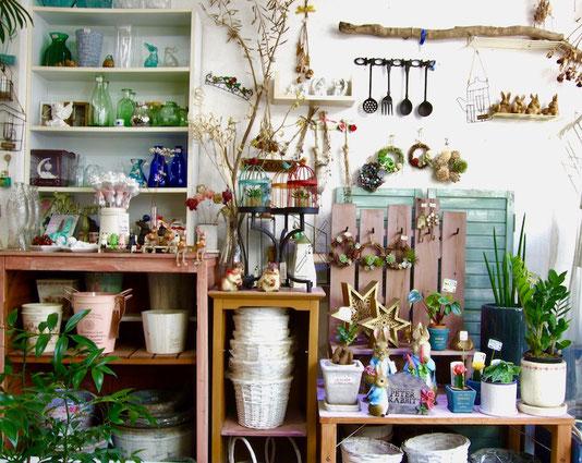 練馬桜台ガーデニングショップ かのはの ピーターラビットのガーデンマスコットをメインに、花瓶・バスケット・ナチャラルリース、細部までこだわった日本製のエンジェル、観葉植物はサンスベリア・エリスラエー、ザミア・クルカス、ペペロミア・アルギレイア、ヒボタン、ガジュマル、鉢は雰囲気に合うものを合わせてあります