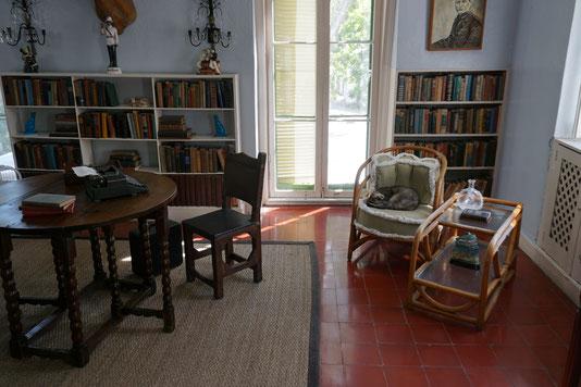 Die Schreibstube des Schriftstellers... die graue Katze sah ein wenig aus wie unsere Hermine ;-)
