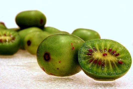 где купить саженцы плодовых деревьев и ягодных кустарников в Клину и Клинском районе