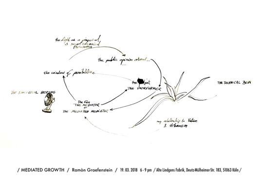 Pfirsich ramon graefenstein kunst installation köln