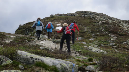 Nordic Walking achter de duinen reizen