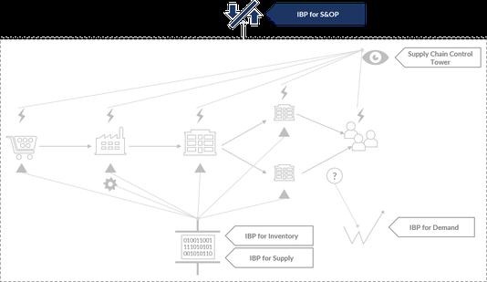 Die einzelnen Bestandteile von SAP IBP
