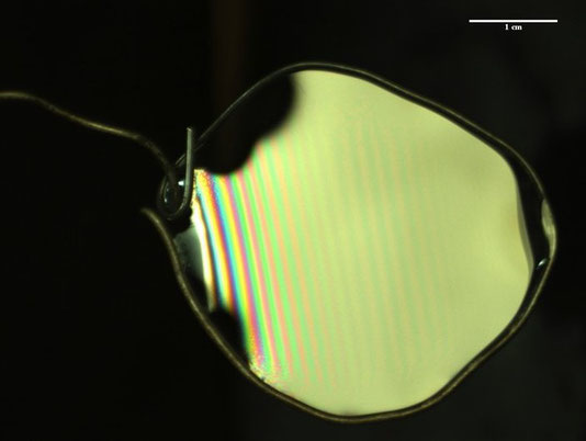 Image of a thin liquid soap film (TTAB solution at 3g/L) in a solid frame (credit M. Cros)