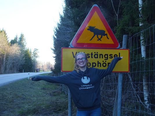 Magdalena vor einem typischen Straßenschild in Schweden
