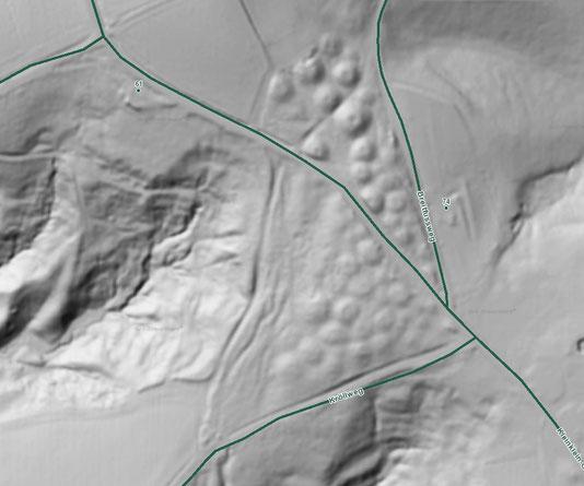 Airborne Laserscan (ALS oder auch LiDAR) der Gräbergruppe Grellwald. Die als Punkte sichtbaren Dellen sind Beraubungstrichter. Copyright SteiermarkGIS 2018.