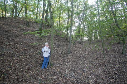 Der gewaltige Holz-Erde-Wall vom Bugstall Alteck.