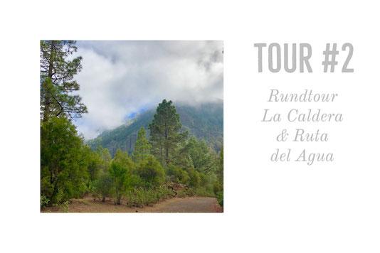 Wandern, Teneriffa, Kanaren, La Caldera, La Orotava, Ruta del Agua, Casa de Agua