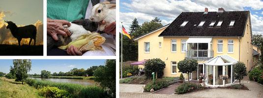 Foto vom Senioren- und Pflegeheim Rummer-Löns GmbH