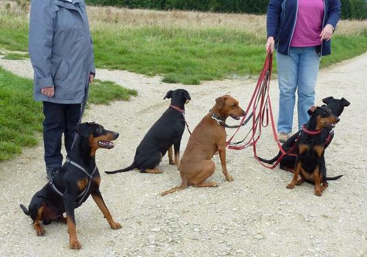 Jacky, Sally, Onnie, Geeva und Sunny (von Links)