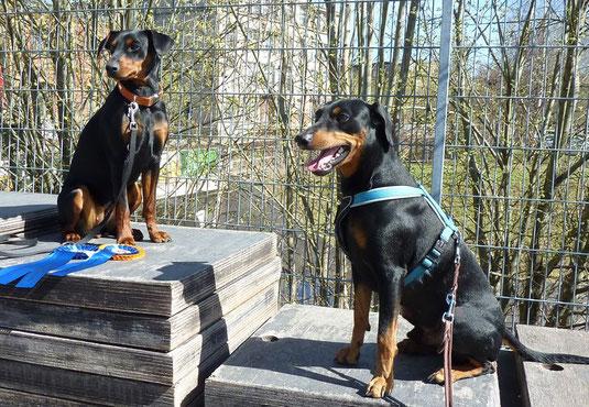Maggie und Mio in Chemnitz ;-))