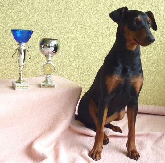 stolze Sunny mit ihrem Landessieger und BOB Pokal