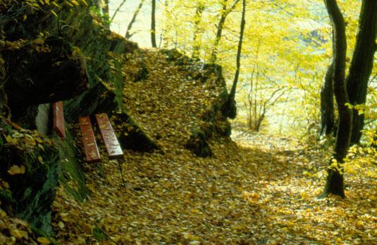 Luisenpfad 1999