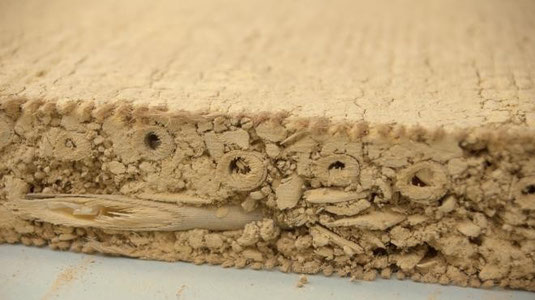 Detail der Haga Claytec Lehmbauplatte mit Schilf und Jutenetz zur Stabilisierung