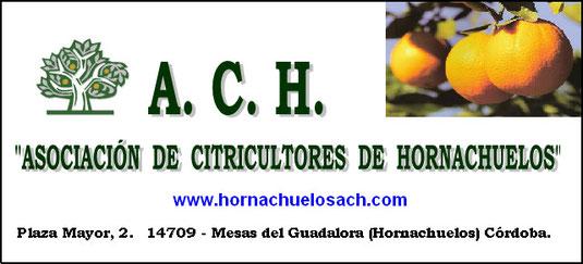 """ASÓCIATE - """"A.C.H."""" ASOCIACIÓN DE CITRICULTORES DE HORNACHUELOS."""