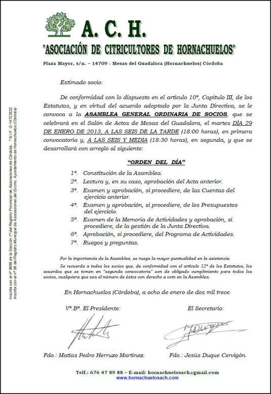 """ASAMBLEA GENERAL ORDINARIA DE SOCIOS DE LA """"A.C.H."""" - 29 Enero 2013 - Haz """"clic"""" en la imagen para ampliar."""