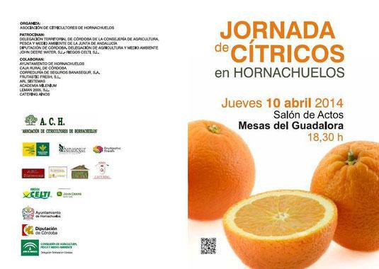 """DÍPTICO JORNADA DE CÍTRICOS EN HORNACHUELOS (10-04-2014) - Haz """"clic"""" en la imagen para ampliar."""