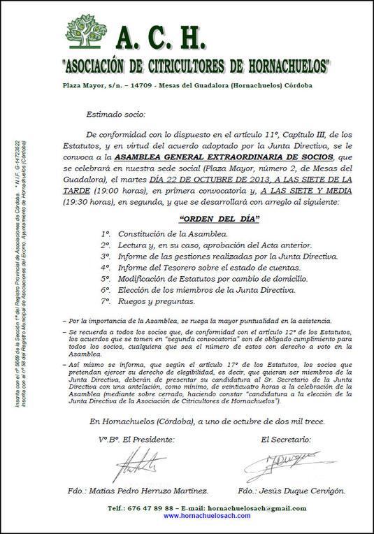 "ASAMBLEA GENERAL EXTRAORDINARIA DE SOCIOS DE LA ""A.C.H."" - 22 de Octubre de 2013 - Haz ""clic"" en la imagen para ampliar."