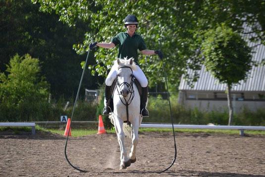 Reifenspringendes Pferd Foto: Felina Redlin