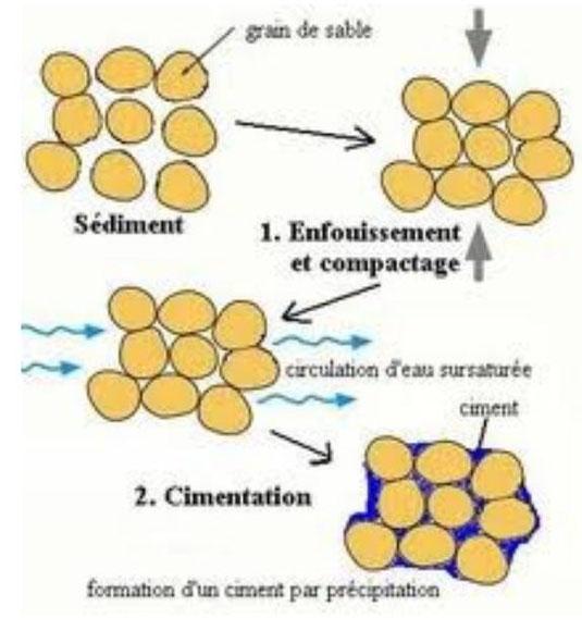 Schéma-bilan de la formation d'une roche à partir de sédiments