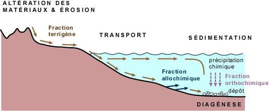 """Schéma du transport des particules depuis les reliefs (origine) jusque dans les bassins sédimentaires (océans et mers). La """"fraction terrigène"""" correspond à toutes les particules sédimentaires issues de l'érosion des reliefs."""