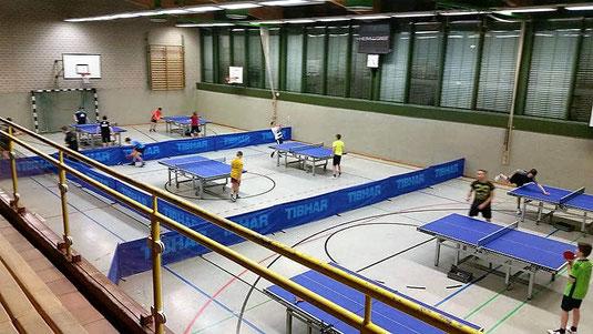 Dein Tischtennisverein in Wernigerode / Harz! (Sachsen-Anhalt). Besuche uns im Giesserweg 6 ... Regionalliga-Spiele in der Francke-Arena, Friedrichstr. 63