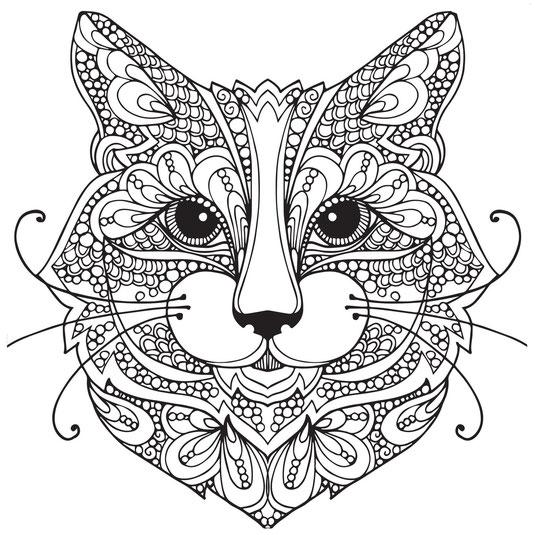 gato para colorear o pintar