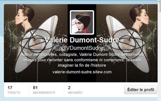 Twitter collages Valérie Dumont-Sudre