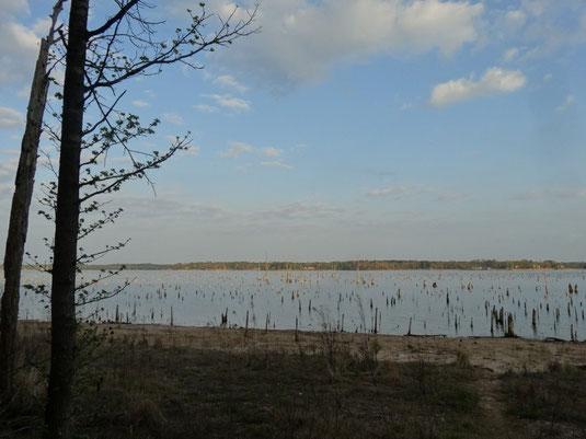 Lake Bob Sandlin