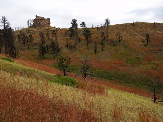 Blackhills Overlook Loop, Chadron State Park , Nebraska