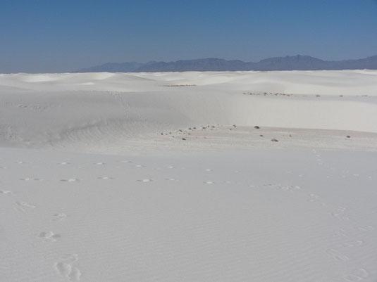 White Sands, Alkali Flat Trail