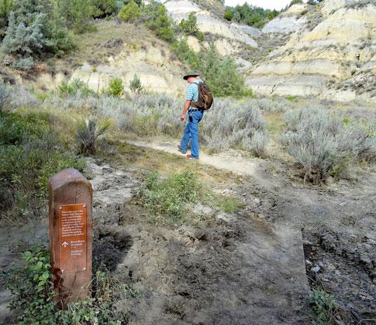10:13 - Ende Nature Trail, jetzt kommt das ansteigende Waldstück
