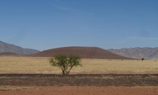 bei Rodeo, an der Grenze zwischen New Mexico und Arizona