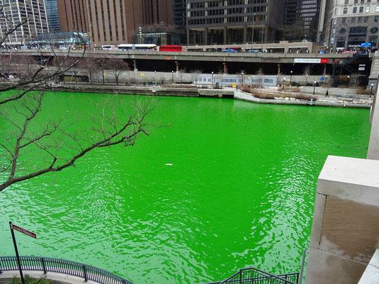 Chicago River am St. Patrick's Day - geht es noch grüner?