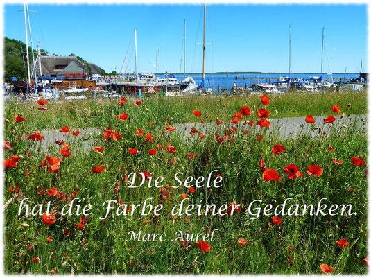 www.naturheilpraxis-ireen-fritsche.de