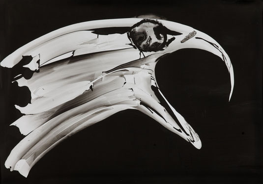 Weißkopfseeadler - Tusche auf Steinpapier -