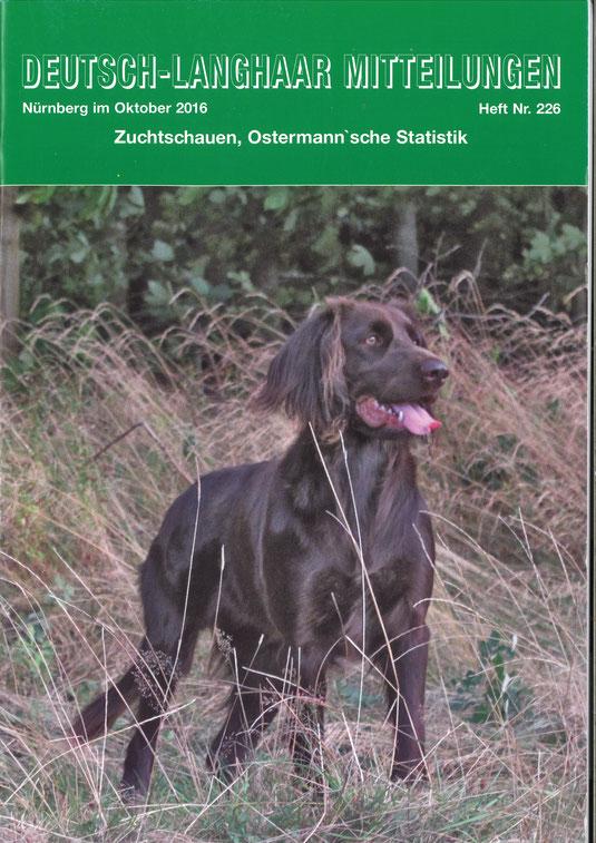 Bailey vom Aartal auf der Titelseite der DL Mitteilungen Oktober 2016