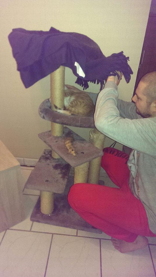 Iris genießt die Streicheleinheiten vom Katzenpapa.
