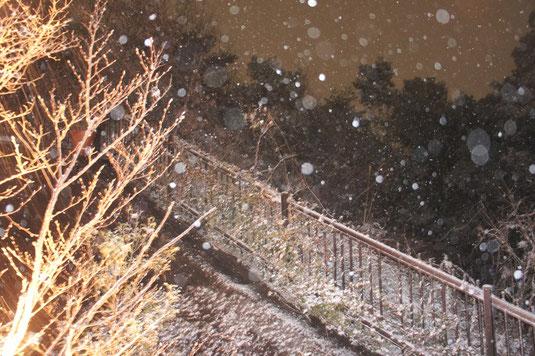 Kansai snow storm