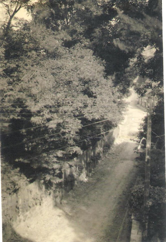 Die große Dreckstraße in Oldendorf vor dem Ausbau 1964/65