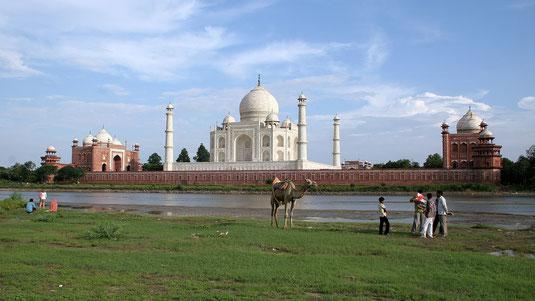 Taj Mahal, Foto David Castor