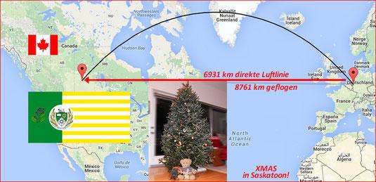 Kasimir, Cäsar und Fredi verbringen Weihnachten und Silvester in Saskatoon, Canada